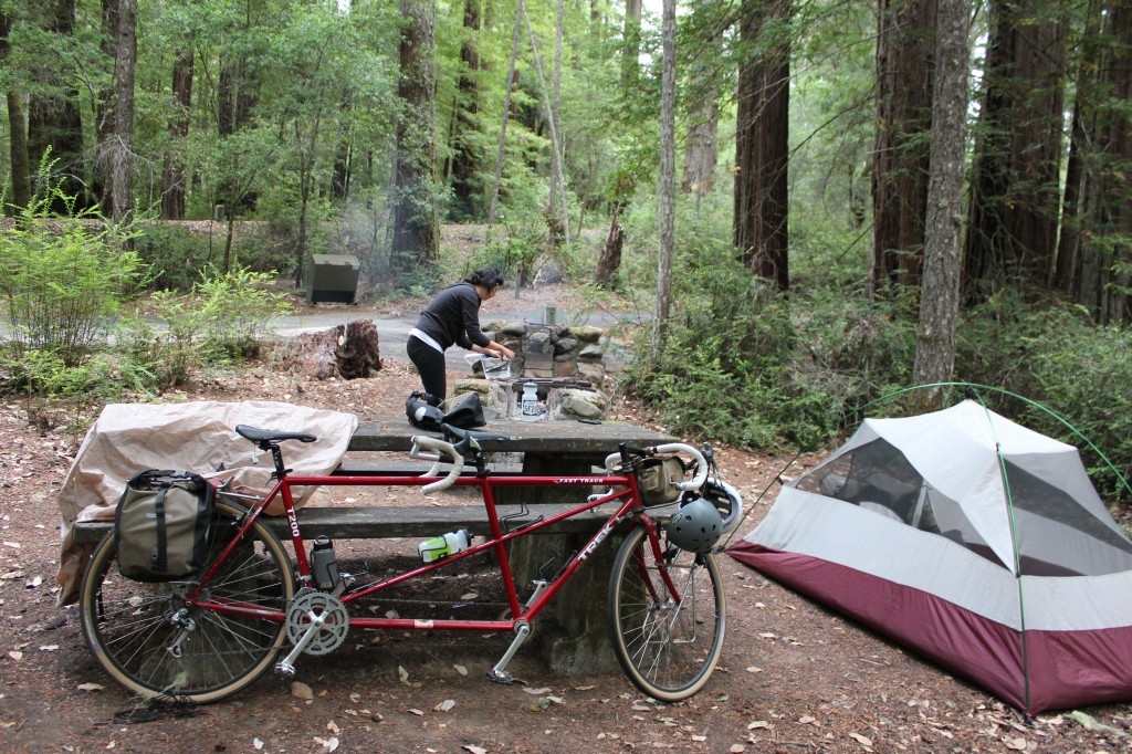 Camping Portola Redwoods State Park